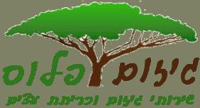 גיזום פלוס - שירותי גיזום וכריתת עצים