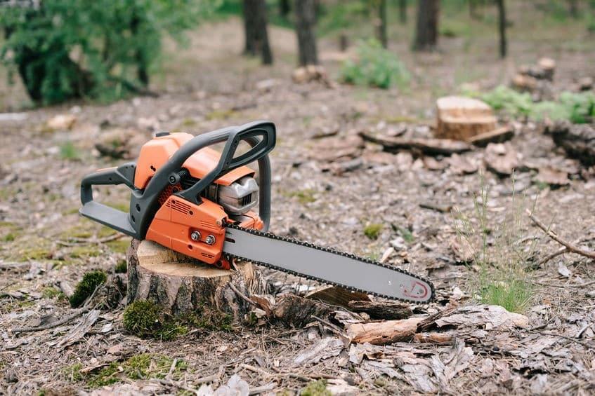 דרוש כרסום עצים - שורשים וגדם לאחר כריתת עץ